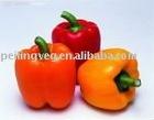 150-200g Good quality fresh yellow pepper