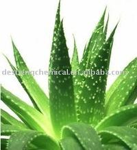 High quality Aloe Vera Extract /Aloe Vera P.E.