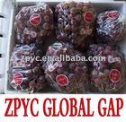 Fresh Chinese red globe grape