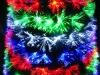 Newest Christmas tree, glittering Christmas tree