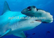 Robotic animals hammerhead shark replica