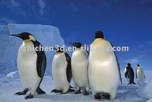 3d immagini/pinguino 3d immagini/pinguino 3d