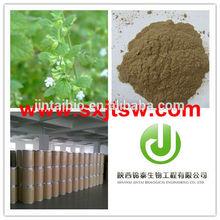 Especialmente produzir puro e natural de alta qualidade de limão bálsamo p. E e.