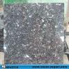 Newstar blue pearl granite tile