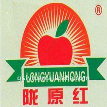 fresh Chinese bagged fuji apple