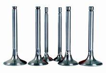 engine valves for HOLDEN HQ 173/202