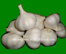 jinxiang pure white garlic producer