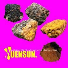 Chaga Mushroom Extract Polysaccharides 10% UV/ Enhance Immune system
