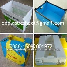 Corrugated Plastic PP Fruit Box