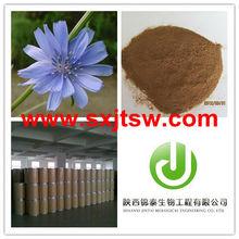 bulk inulin 95% 90% HPLC