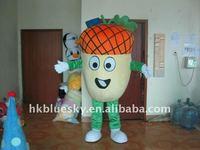fresh fruit mascot costume