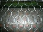 electro galvanized hexagonal wire mesh/galvanized chicken mesh/chicken wire netting