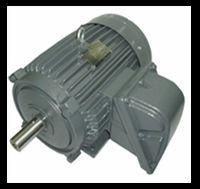 TECO Flameproof premium efficiency 3 phase induction motor