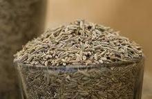 Cumin seeds from gujarat