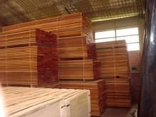Wood Lumber [Mahogany, Mangium, Falcata, MISC...]