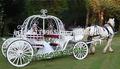 inglés de la boda cenicienta transporte
