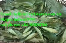 HERBS: Dried soursop/ graviola leaf, Sabah snake grass, Crinum latifolium, Hibiscus flower tea,Stevia Rebaudiana