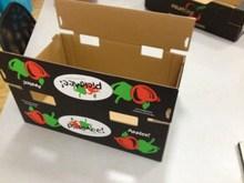 Cardboard for fruit& vegetables