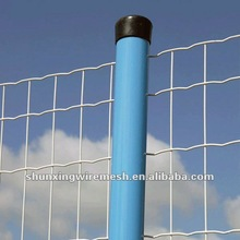 China Anping PVC coated Welded Wire Mesh(Holland wire mesh manufacturer)