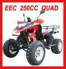 NEW EEC 250CC QUAD ATV BIKE(MC-382)