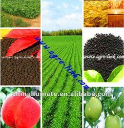 China bio min-granular Boron humic acid manufacturer