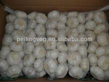 2013 new fresh garlic (low price)