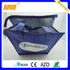 aluminium foil cooler bag NV-D0111)