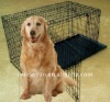 black metal dog cage with two doors