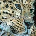 หัวของสัตว์ภาพวาดสีน้ำมัน, หัวเสือภาพวาดสีน้ำมัน