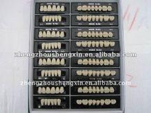 China Brand HuGe Resin teeth Kaili A2/A3