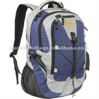 2013 hot sellingpromotional backpack,laptop bag