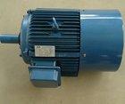 Y Series Three-Phase Asynchronous ac motor 250 kw