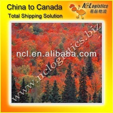 Container shipping from Ningbo to Canada
