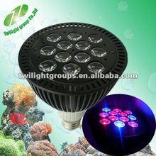 2012 New!! PAR38 Tricolor LED Aquarium lights