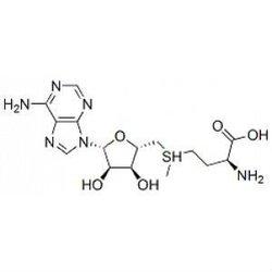 S-Adenosyl-L-methionine 29908-03-0 help fight depression, liver disease, osteoarthritis