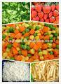 Nomes de frutas e legumes ( legumes congelados ) com a fda, brc, halal, haccp, kosher