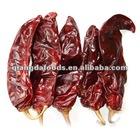 China organic paprika