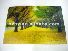 3D lenticular picture - natural