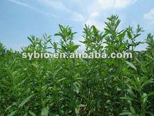 100% Natural stevia sweeteners, high sweetness different assay of Stevioside and Rebaudioside-A