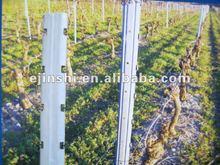 vineyard metal trellis post