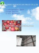 fresh red pink lady apple fruit