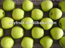 2014 apple fruit