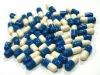 350mg Black Cohosh Extract powder capsule(Triterpene Glycosides 2.5%-20%)