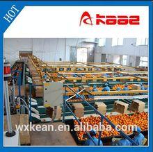 Full-automatic photo electrical fruit grading machine