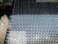 Qualidade superior frisado wire mesh tecelagem power tear