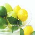 natural de bergamota puro aceite esencial de aromaterapia