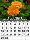 2014spiral wall calendar