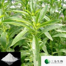 Hot Product Stevia P.E. ,80~97% Stevioside, 40~97% RebA