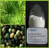 Sexual enhancer Saw palmetto/Sabal fruits P.E. (Fatty acids) powder