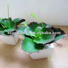 Artificial plastic succulents